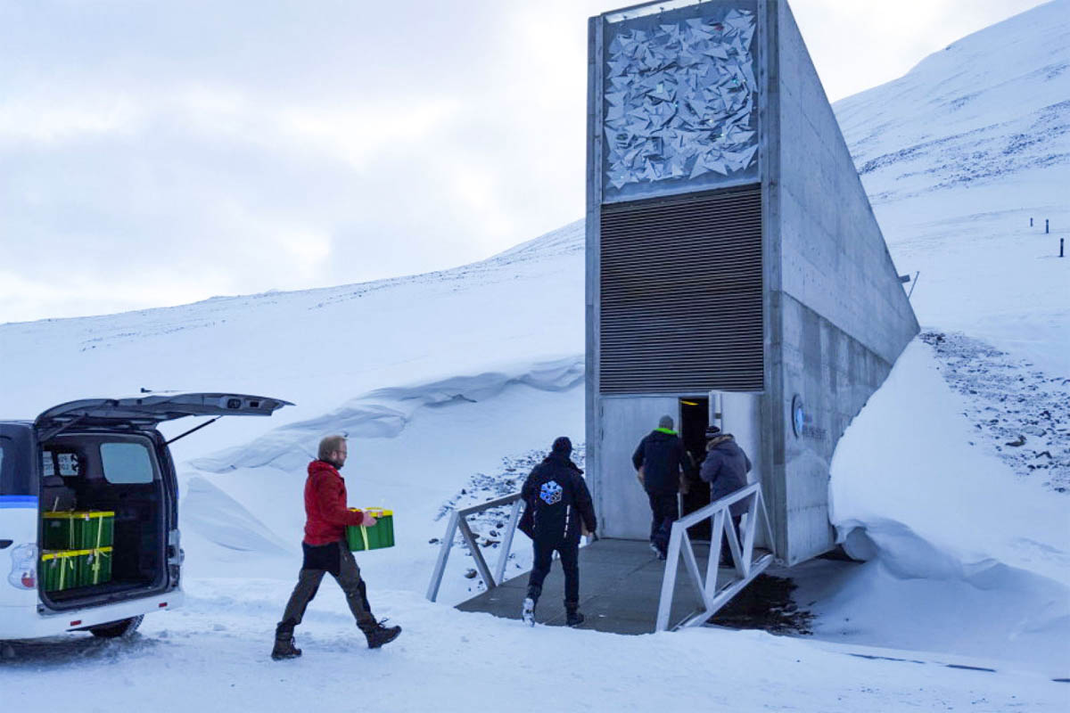 Flake media: 'Scientists Add 50,000 Seeds to Arctic Doomsday Vault Because Everything Is Awful'