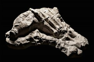 fossilhand
