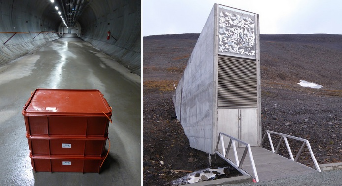 Massive upgrade or mishap? 100M kroner overhaul proposed on seed vault's 10th birthday – nearly triple original cost of 'fix'