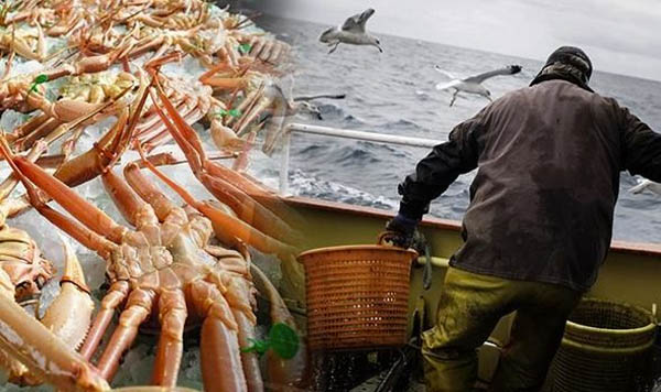 SOVEREIGNTY CLAWS: Norway tightens grip on Svalbard's snow crabs and boosts its claim to oil with Supreme Court ruling