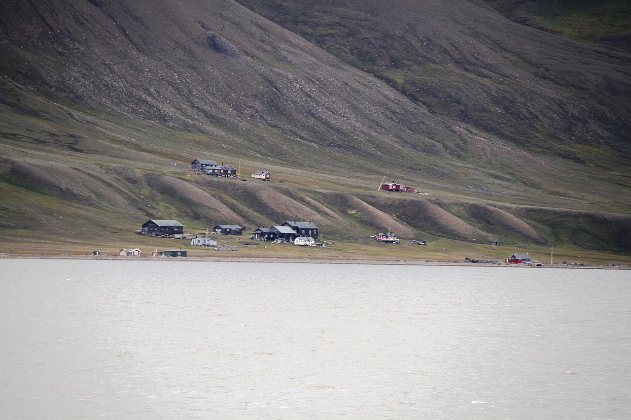 POLAR BEAR, CUB AT HIORTHHAMN: Governor reponds to late Saturday night visit at cabin area across from Longyearbyen