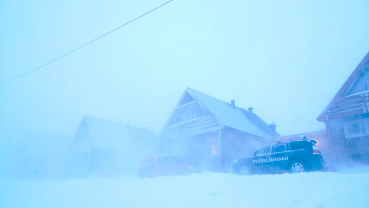 Gale-force blizzard