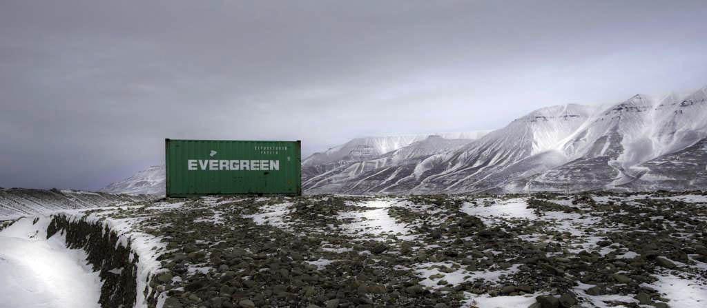 evergreenphoto