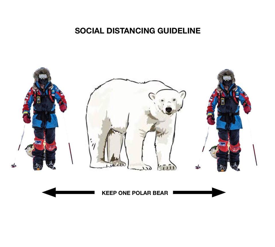 polarbeardistancing